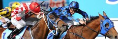 2017 Cox Plate & Manikato Stakes packages • Sportsnet Holidays