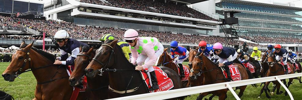 2018 Melbourne Cup Packages and P&O Crusies • Sportsnet Holidays