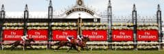 2018 Melbourne Cup Day packages • Sportsnet Holidays