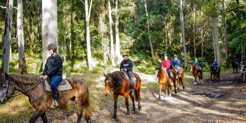 Horse Riding - Credit: https://www.visitnsw.com