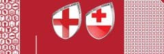 Rugby World Cup 2019 England vs TOnga