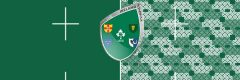Rugby World Cup 2019 Irland