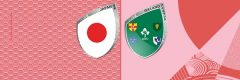 Rugby World Cup 2019 Japan vs Irland