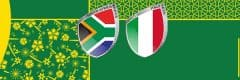 Rugby World Cup 2019 South Africa vs Italy