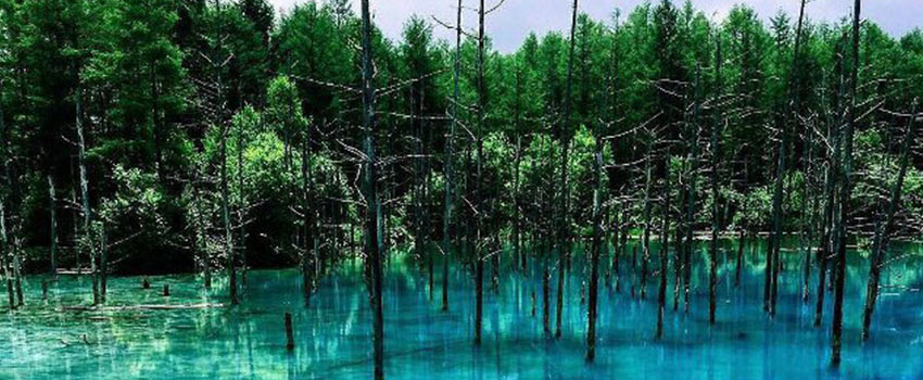 The blue pond - The Most Instagrammable Spots In Japan