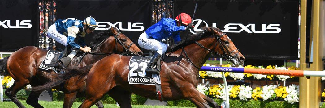 Melbourne Cup 2019 travel packages and P&O cruises • Sportsnet Holidays