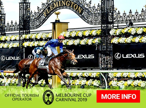 2019 Melbourne Cup Carnival travel packages and cruises