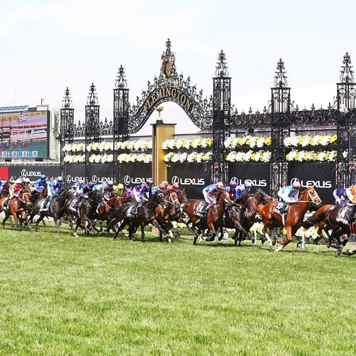 2020 Melbourne Cup Carnival travel packages and cruises