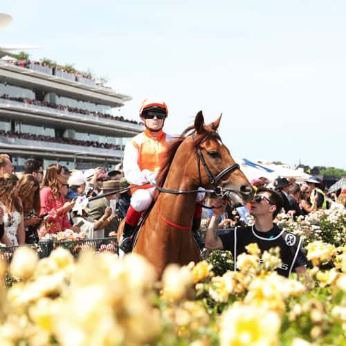 2021 Melbourne Cup Carnival • Sportsnet Holidays